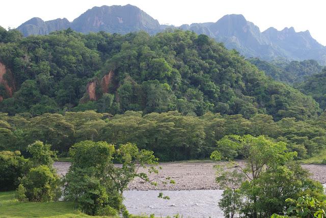 Río Upía, El Secreto, 310 m (Casanare, Colombie), 4 novembre 2015. Photo : J.-M. Gayman