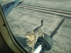 Photo: I can has plane plz?
