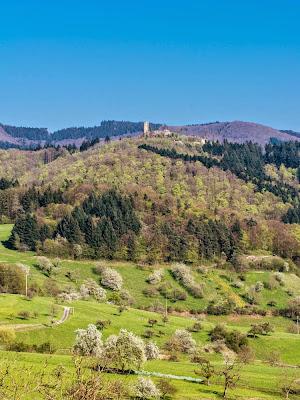Die Sausenburg oberhalb von Sitzenkirch