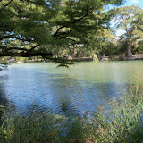 Fall Vacation 2012 - 115_3815.JPG