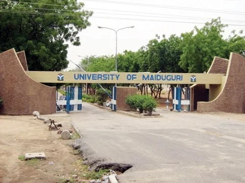 University Of Maiduguri 2017 /2018 Post -Utme Form Is Out