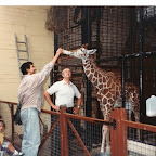 19930705 marwell zoo.jpg