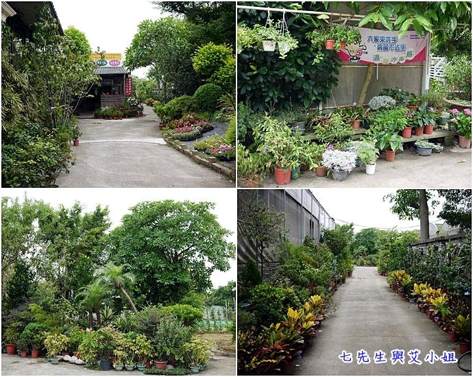 2 金羽庭花卉農場