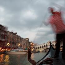 Venice Portfolio