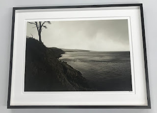 Signed Shoreline Photo