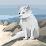 鈴木裕士's profile photo