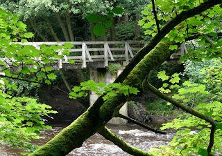 River Nidd, Knaresborough, North Yorkshire