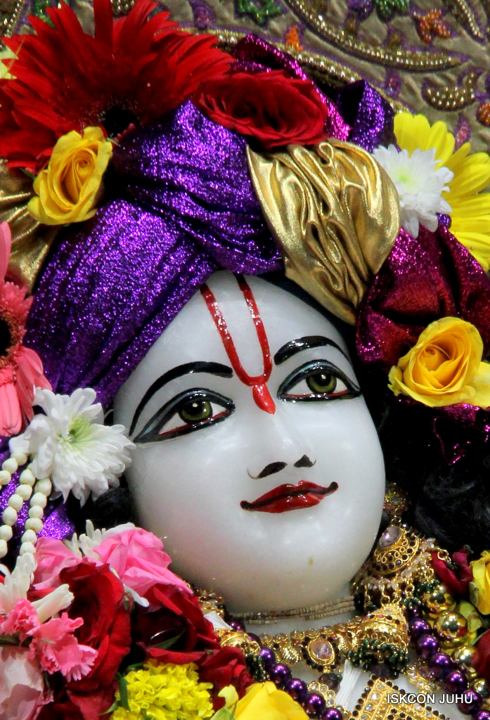 ISKCON Juhu Sringar Deity Darshan on 22nd Oct 2016 (29)