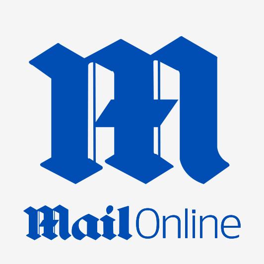 Image result for mail online logo
