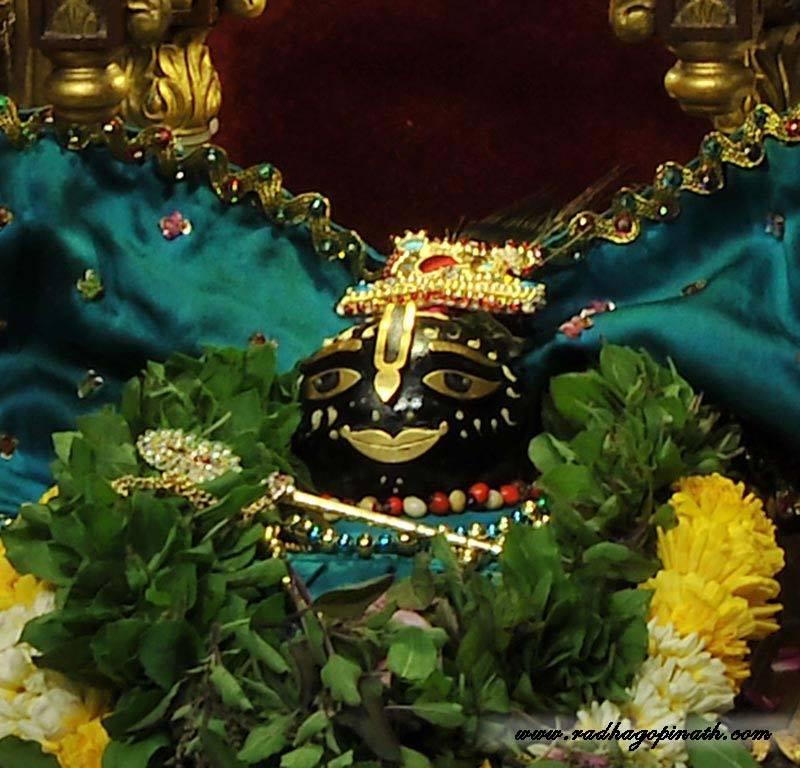 ISKCON Chowpatty Deity Darshan 03 Mar 2016  (18)
