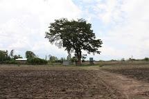 Na jihu Etiopie mezi oblastmi Oromea a Alaba se nachází vodní zdroj Alamtena. (Foto: Monika Ticháčková)