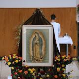 Virgen de Guadalupe 2015 - IMG_6077.JPG