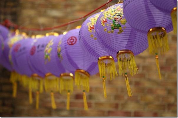 purple-lanterns