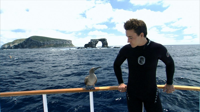 Rob Stewart at Darwin Island, Galapagos, Ecuador, with a brown boobie. Photo:  Rob Stewart