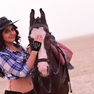 Raashi Khanna Glamorous Pics From Supreme