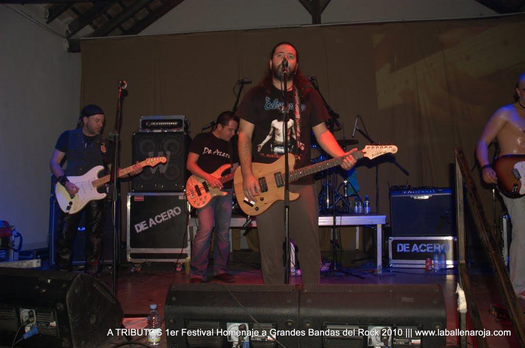 A TRIBUTOS 1er Festival Homenaje a Grandes Bandas del Rock 2010 - DSC_0167.jpg