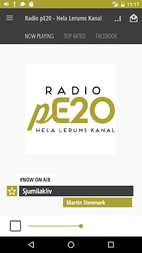 Radio pE20 - Hela Lerums Kanal  screenshots 1