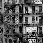 NY (15 of 39).jpg