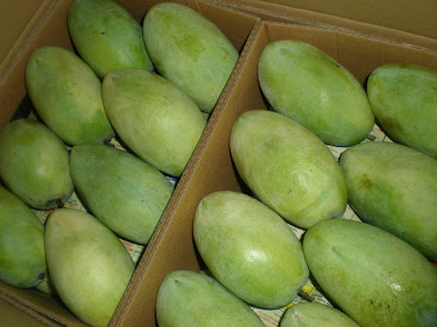 It takes mangos to save a village