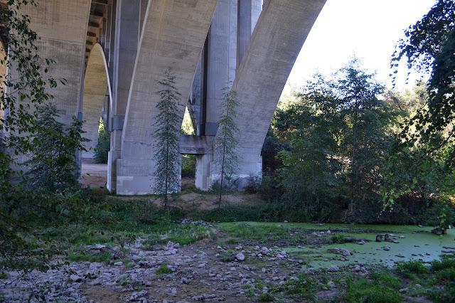 the 134 bridge