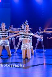 Han Balk Voorster Dansdag 2016-3728-2.jpg