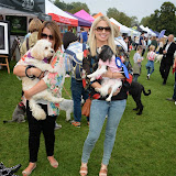 WWW.ENTSIMAGES.COM -      at       Pup Aid at Primrose Hill, London September 6th 2014Puppy Parade and fun dog show to raise awareness of the UK's cruel puppy farming trade. Pup Aid, the anti-puppy farming campaign started by TV Vet Marc Abraham, are calling on all animal lovers to contact their MP to support the debate on the sale of puppies and kittens in pet shops. Puppies & Celebrities Return To Fun Dog Show Fighting Cruel Puppy Farming Industry.                                              Photo Mobis Photos/OIC 0203 174 1069