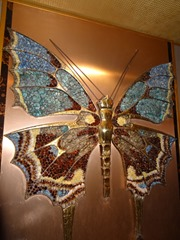 2016.03.14-047 papillon
