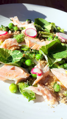 From the Antipasti section of the Renata menu, Smoked King Salmon with spring vegetables, rye crumble and salsa verde