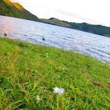 Rotorua_Lac_Okareka