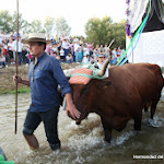 CaminandoalRocio2011_625.JPG