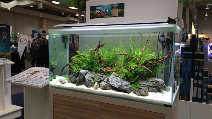akvariebutikken
