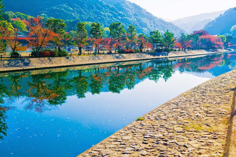 京都 宇治 写真