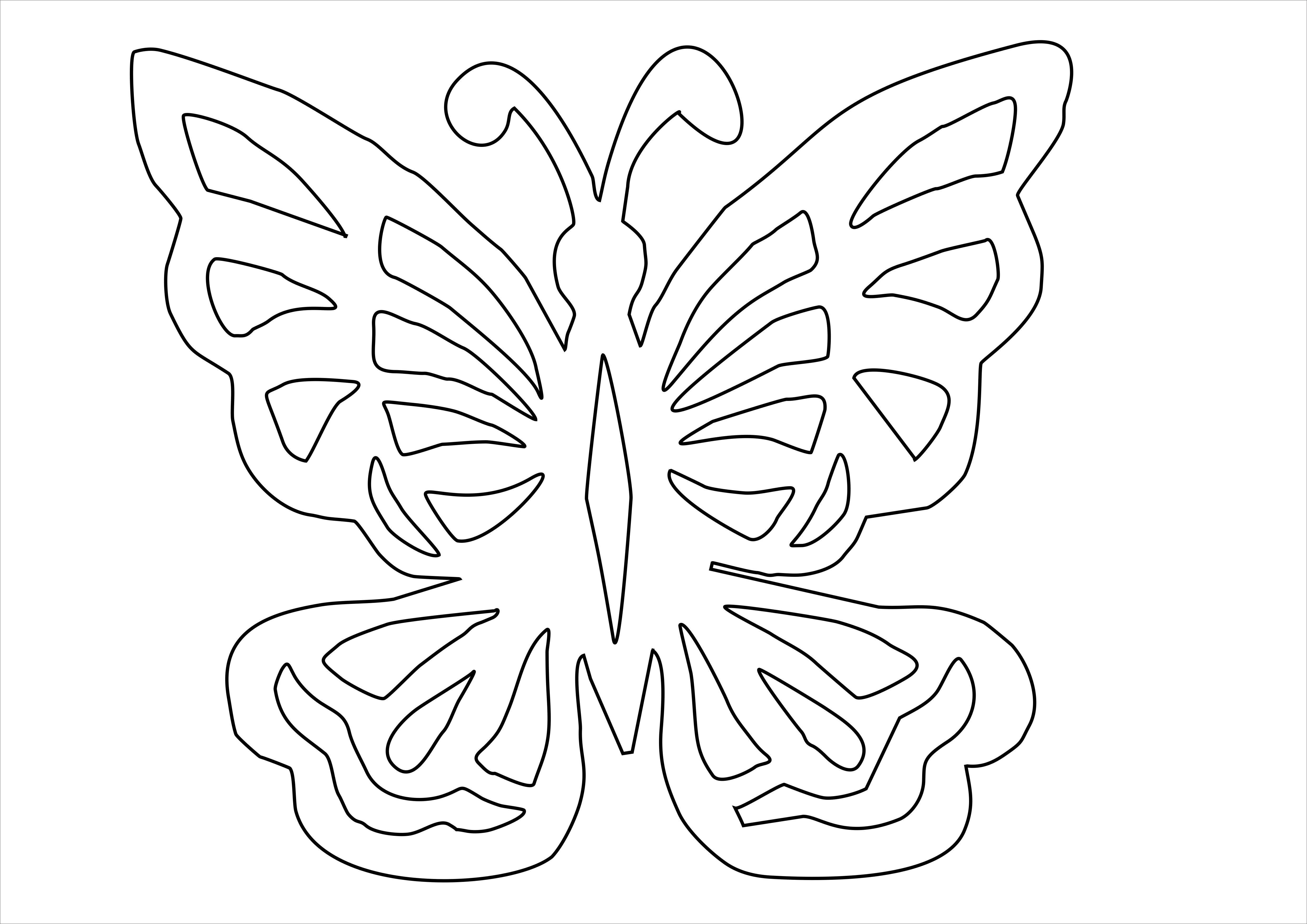 Бабочки цветы шаблоны для открыток, летием картинки картинки