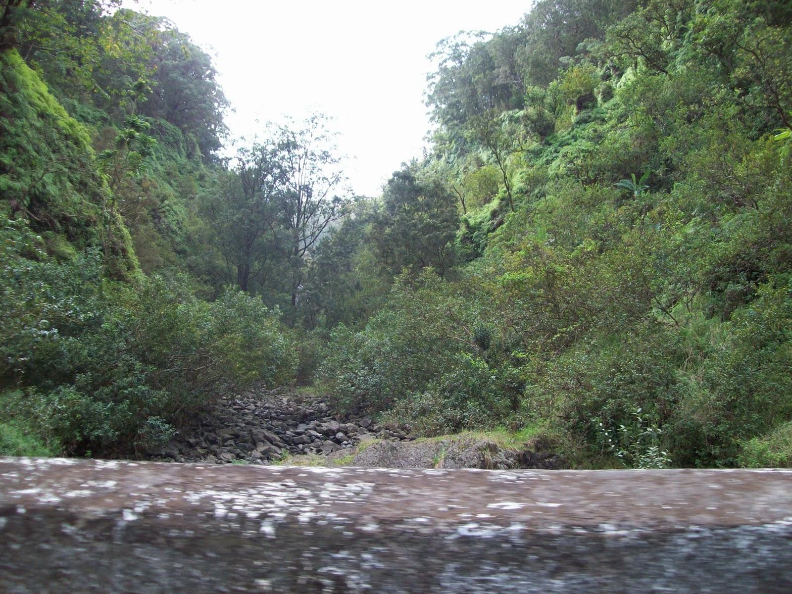 Hawaii Day 5 - 114_1473.JPG
