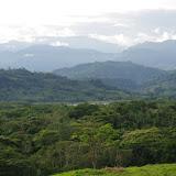 Río Upía, Algarrobo, 310 m (Casanare, Colombie), 4 novembre 2015. Photo : J.-M. Gayman