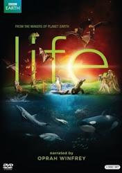 BBC Life - Cuộc sống hoang dã