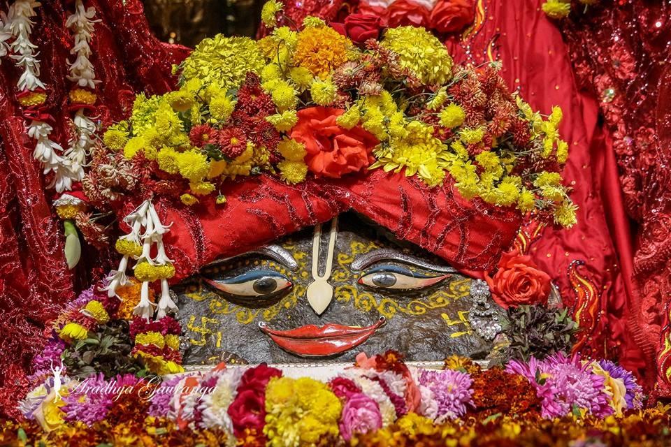 ISKCON Mayapur Deity Darshan 06 Jan 2015 (17)