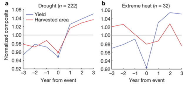 Influence of  extreme weather disasters (EWDs) on national cereal yields and harvested area. a, b, Yield (blue) and harvested area (red) composites for drought (n = 222) (a) and extreme heat (n = 32) (b), with significant points (those lying beyond the control box plot whiskers) marked by asterisks. Graphic: Lesk, et al., 2016 / Nature