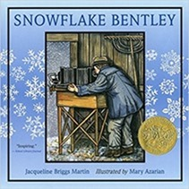 Winter - Snow - Snowflake Bentley[14]