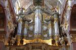 Massive organ.