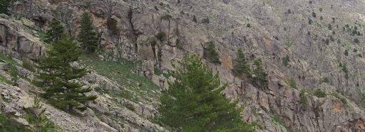 ...avec de belles barres en terrasse à gauche qui montent sur les flancs du Capizzolu