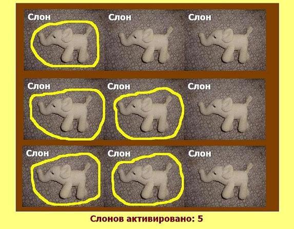 5 слонов