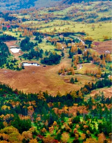 日本国道最高地点から見下ろした芳ヶ平の紅葉