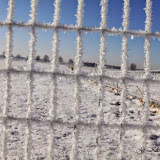 Winter - Winter-053.jpg