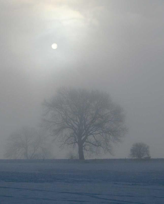 SnowBR24
