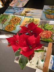 My Poinsettia 06