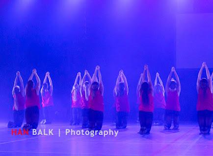 Han Balk Voorster Dansdag 2016-3364-2.jpg