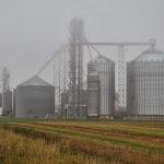 Wisconsin Fog.JPG