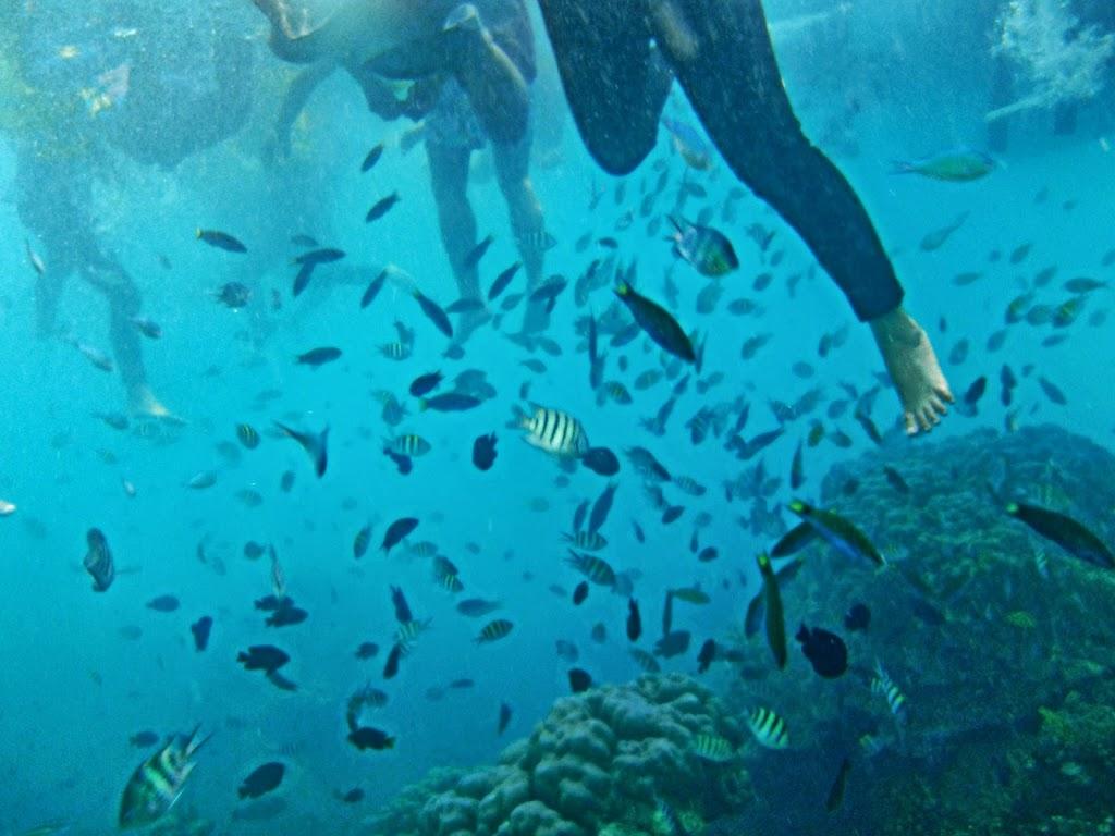 ngebolang-pulau-harapan-14-15-sep-2013-olym-33