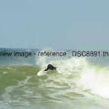 _DSC8891.thumb.jpg
